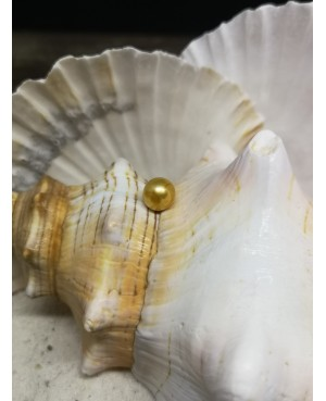 """Zoetwaterparel """"Gold marble"""""""